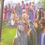 Libro O Novo Testamento de Librería Betel