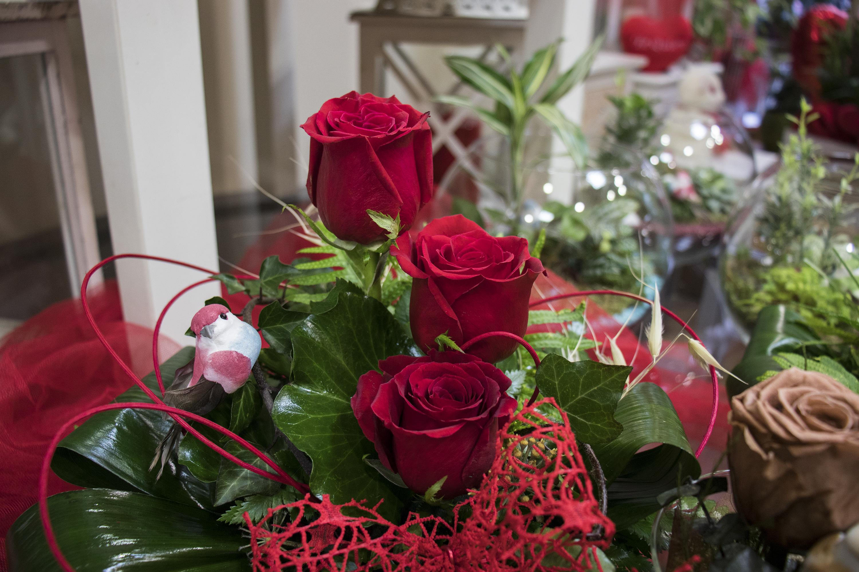 Centro de rosas de Drácena.