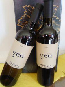 Comprar-Pack-2-botellas-de-vino-Albarino-Gea