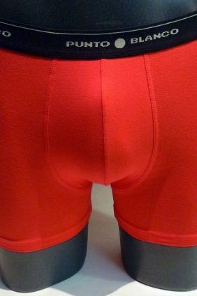Pack de 3 calzoncillos boxers Punto Blanco baratos
